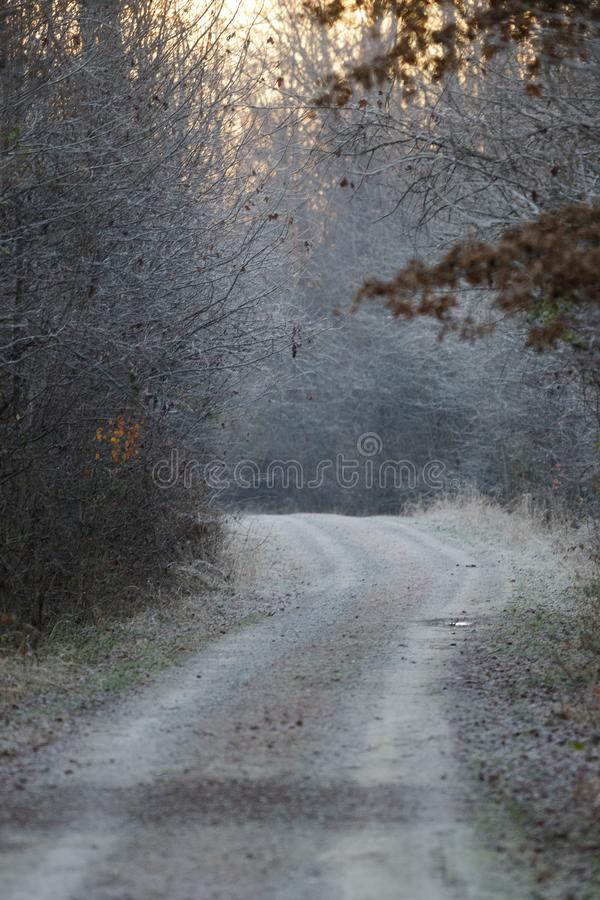 Frosty Gravel Road stockfoto
