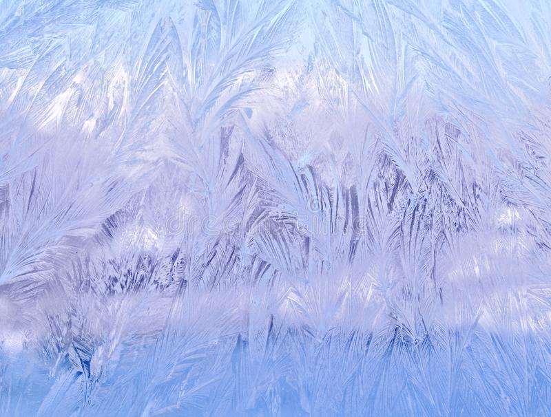 Frosty lace pattern on the glass royalty free stock image