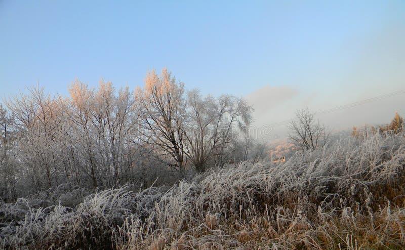 Frosty Meadows y campos fotografía de archivo libre de regalías