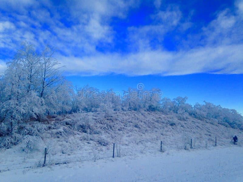 Frosty mornin stock images