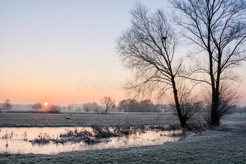 Frosty Morning. Meadow on a frosty morning stock images