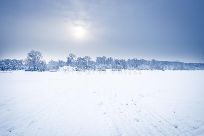 Frosty morning winter snow field landscape with distant forest on horizon in cold frost winter day in soft blue color stock photo