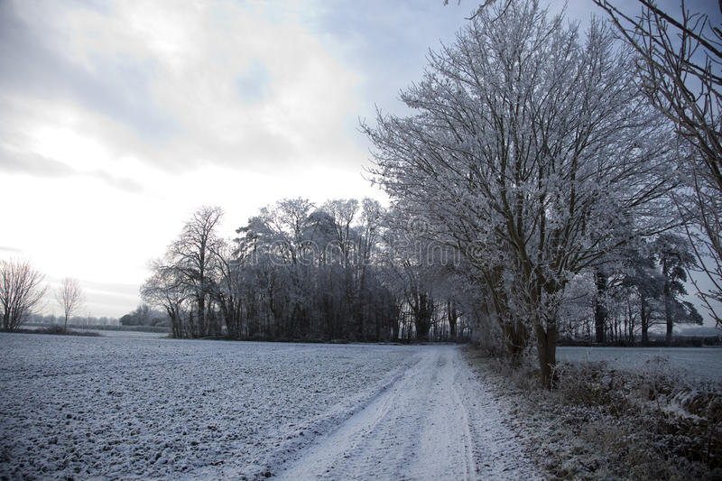 Download Frosty Mornings In The Cotswold Countryside Stock Image - Image: 12534605