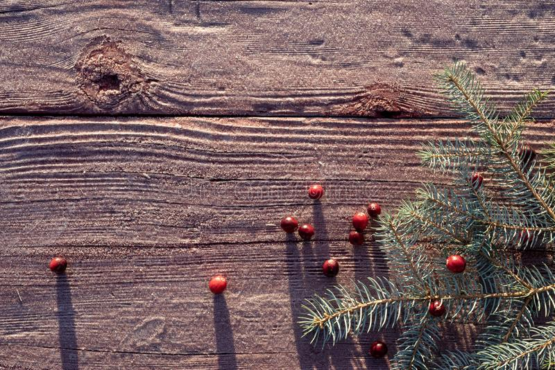 Frosty outdoor wood tabletop with pine branch with red cranberries Christmas background. Frosty outdoor wood tabletop frosty in morning with Blue Spruce branch stock image