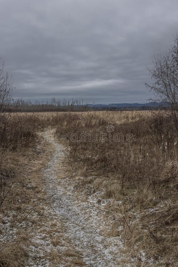 Frosty path through dried winter grass stock images