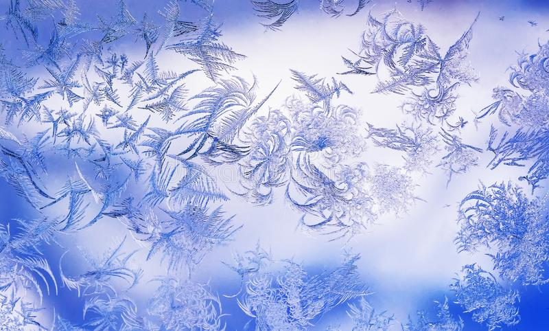 frosty pattern with various ornate patterns on the transparent glass on the winter window in delicate lilac and blue stock photos
