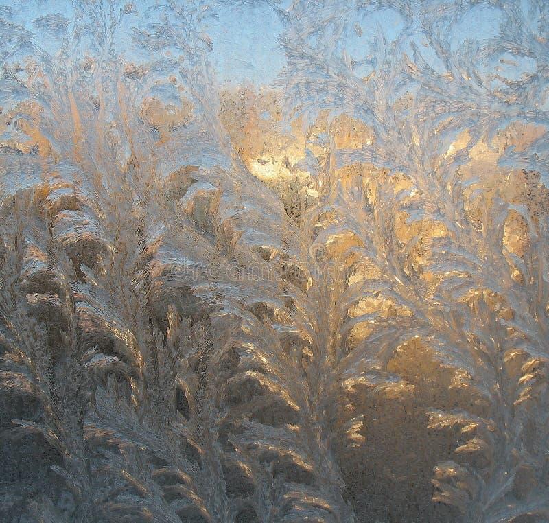 Frosty patterns on the glass stock photography