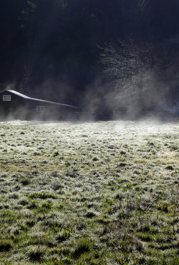 Frosty ranch field royalty free stock photography