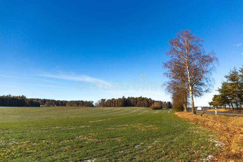 Frosty rural morning. Snowless winter in Czech countryside.  stock photo