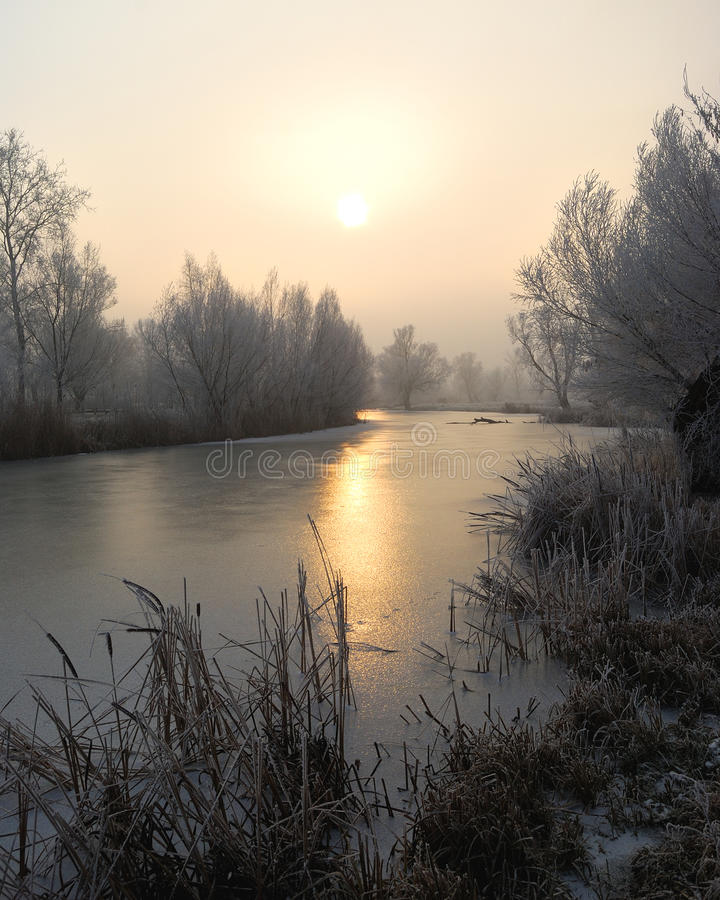 Frosty trees and backwater reflection in sunset time stock photography