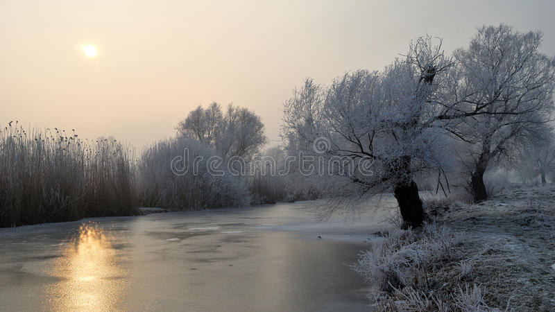 Frosty trees and backwater reflection in sunset time stock images