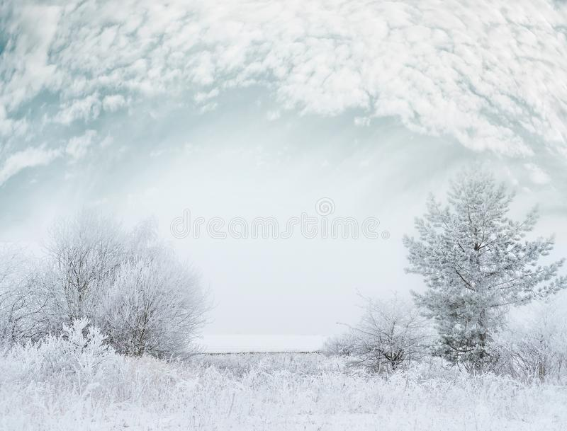 Frosty winter day landscape with Snow covered trees and beautiful sky royalty free stock image