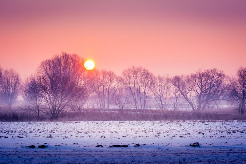 A cold winter morning stock photography