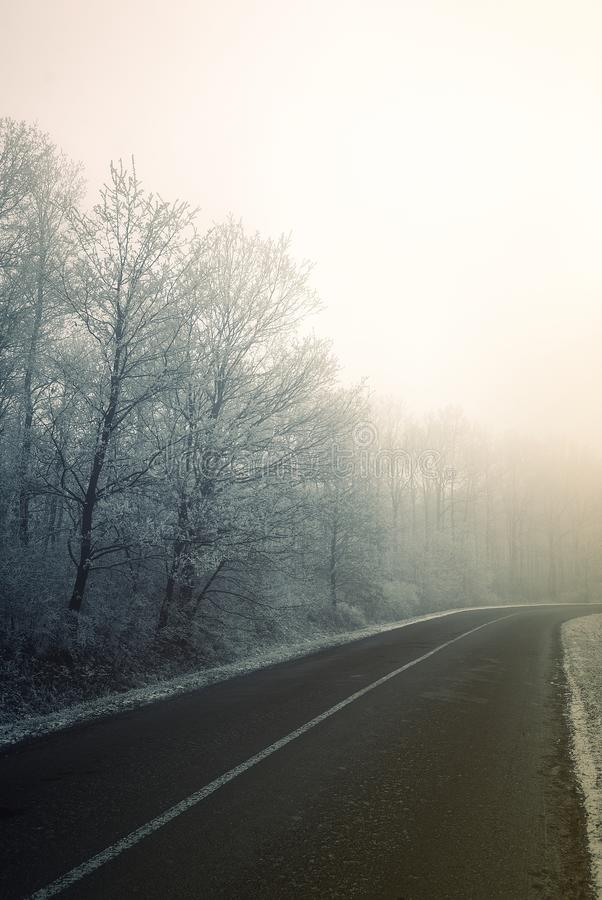 Frosty winter morning road in Hungary stock photo