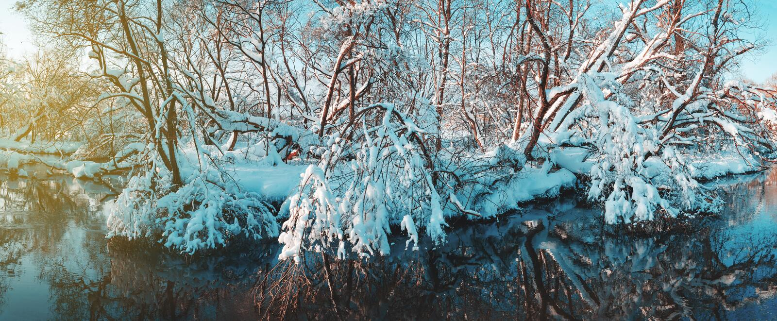 Frosty winter panorama of forest river and beautiful snow covered trees on a sunny morning stock image