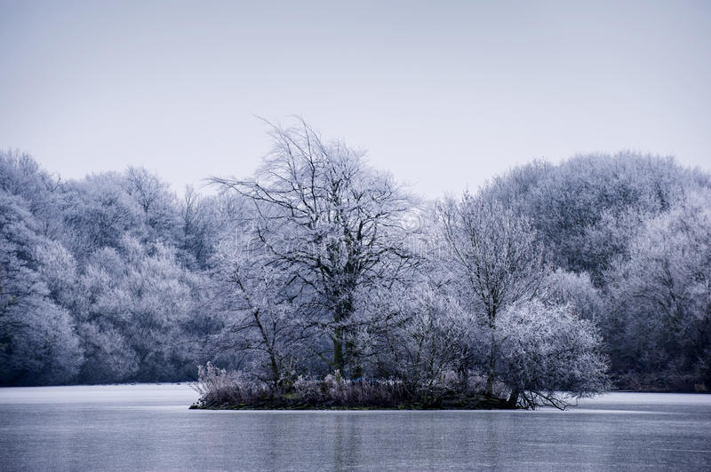 Download Frosty Winter Tree Landscape On A Lake Stock Image - Image: 28762765