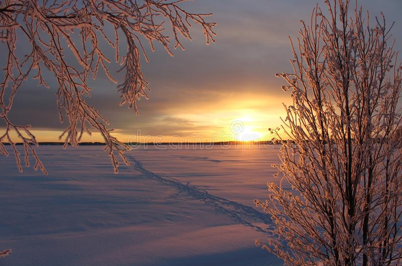 A frosty winterday in Luleå. A frosty and chilly but enchanting beautiful december day in Lule stock photo