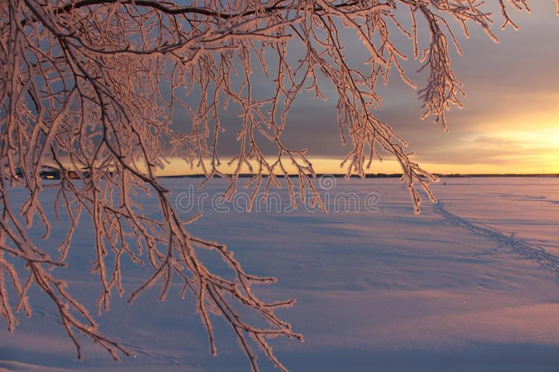 A frosty winterday in Luleå. A frosty and chilly but enchanting beautiful december day in Lule stock photography