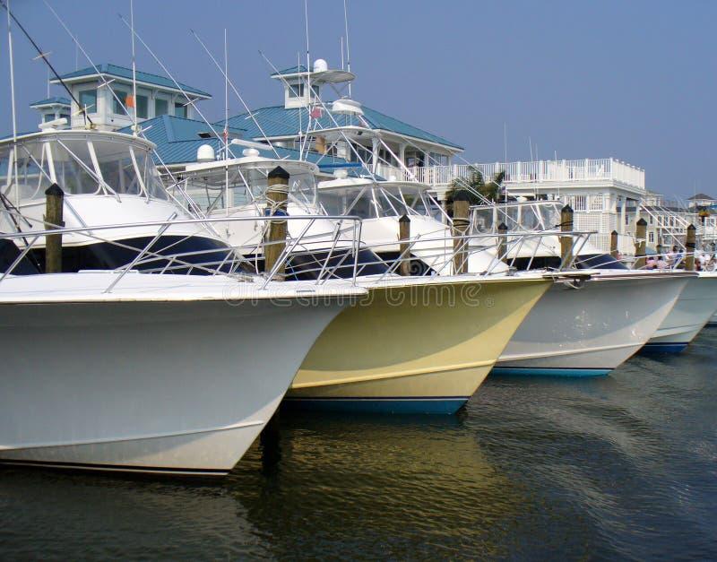 Frota de Sportfishing foto de stock