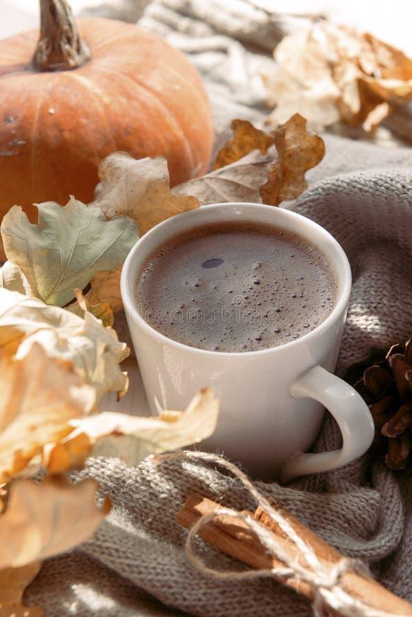 Coffee, hot invigorating dry among autumn leaves, red pumpkin. Frothy coffee, hot invigorating dry among autumn leaves, red pumpkin royalty free stock images