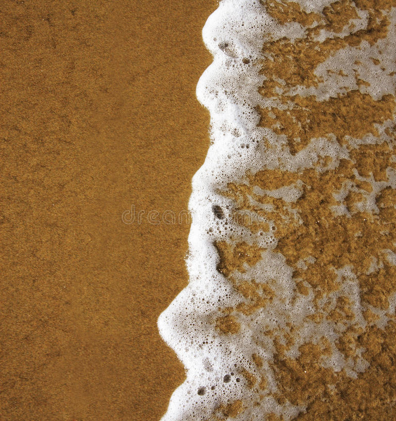 Frothy ocean wave on a sandy beach. Close-up of a frothy ocean wave on a sandy beach stock photo