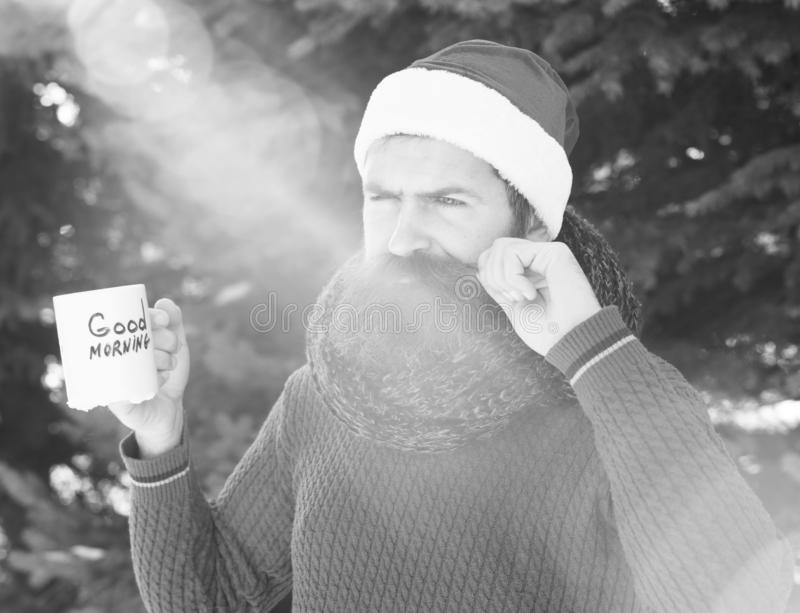 Frown handsome man in santa claus hat, bearded hipster with beard twirls moustache and drinks from cup with good morning. Text on sunny winter day outdoors on stock image