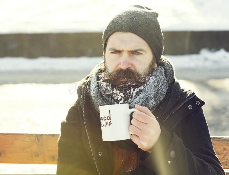 Frown man, bearded hipster with beard and moustache covered with white frost drinks from cup with good morning text. Sitting on wooden bench on snowy winter day royalty free stock image