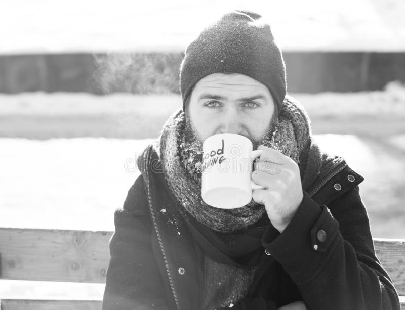 Frown man, bearded hipster with beard and moustache covered with white frost drinks from cup with good morning text. Sitting on wooden bench on snowy winter day royalty free stock images