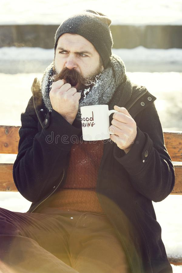 Frown man, bearded hipster with beard and moustache covered with white frost drinks from cup with good morning text. Sitting on wooden bench on snowy winter day royalty free stock photography