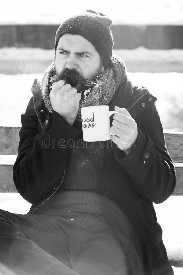 Frown man, bearded hipster with beard and moustache covered with white frost drinks from cup with good morning text. Sitting on wooden bench on snowy winter day royalty free stock photos