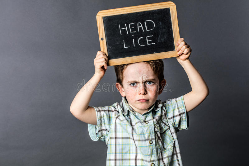 Frowning preschooler standing with a stressful head lice slate complain. Frowning preschool child standing and holding a stressful writing slate as a head lice stock images