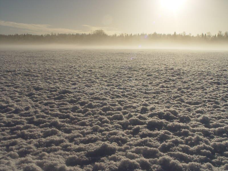 Download Frozen stock image. Image of polar, frost, eternity, sunrise - 153723