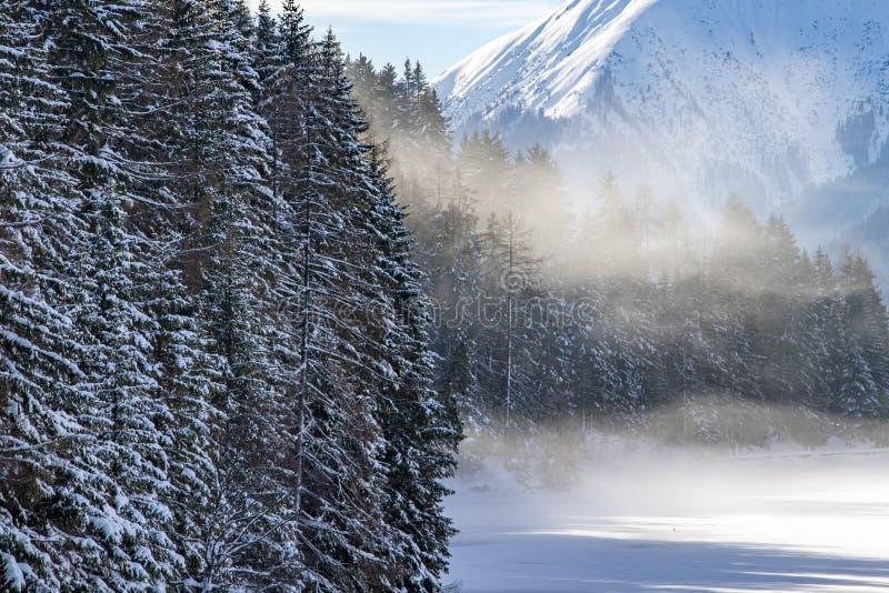 Frozen alpine lake fog. At sunrise royalty free stock photos