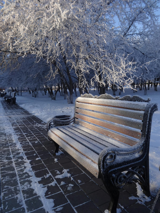 Frozen bench in a city Park winter royalty free stock photos