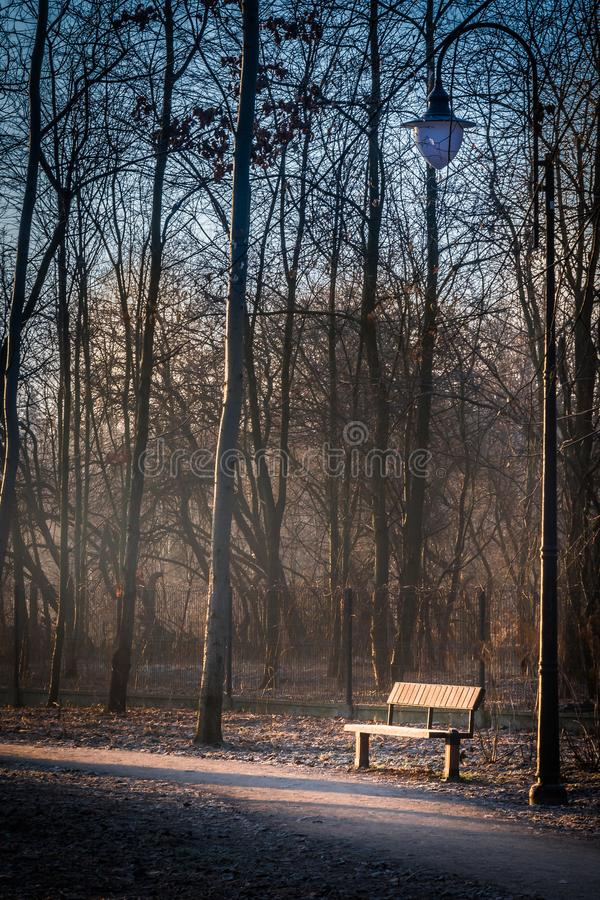 A frozen bench and park lamp next to a path lit by an orange sun royalty free stock photography