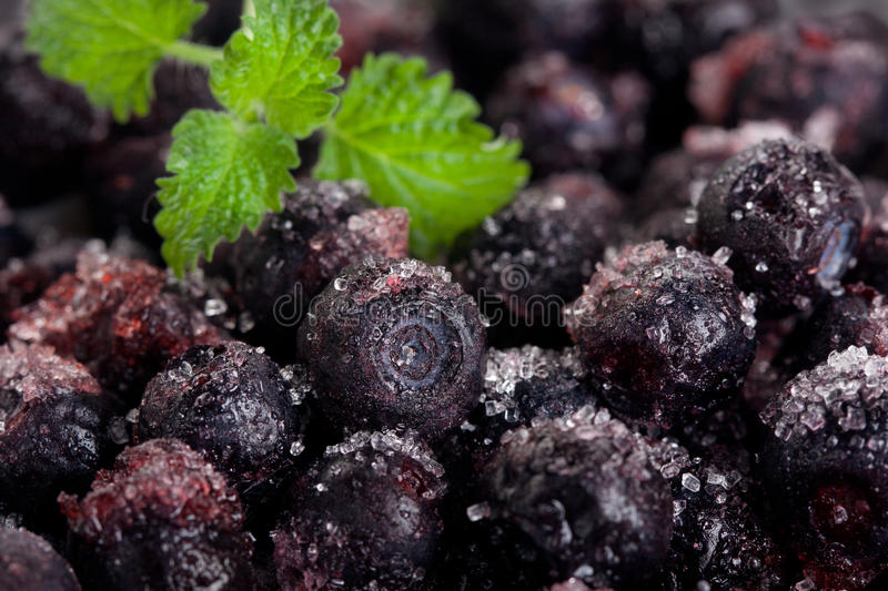 Download Frozen Berry Royalty Free Stock Image - Image: 18046096