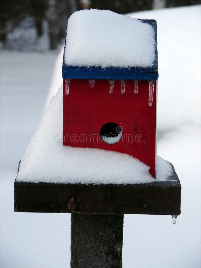 Frozen birdhouse stock image