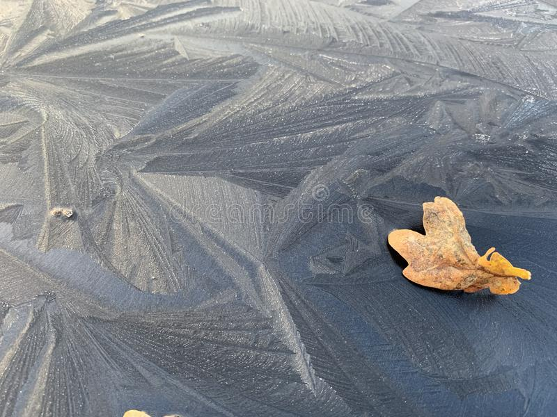 Frozen black car roof with interesting pattern royalty free stock images