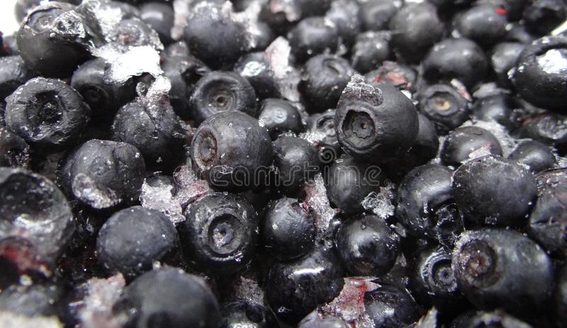 Frozen blueberries with ice close up background royalty free stock image