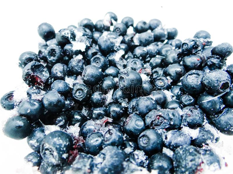 Frozen blueberries isolated on white with ice royalty free stock photography