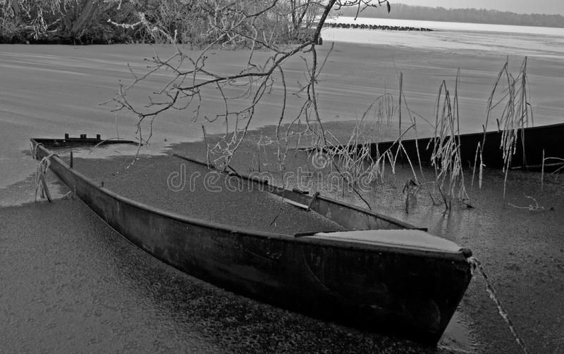Download Frozen boat stock image. Image of boat, cold, winter, tree - 3951151