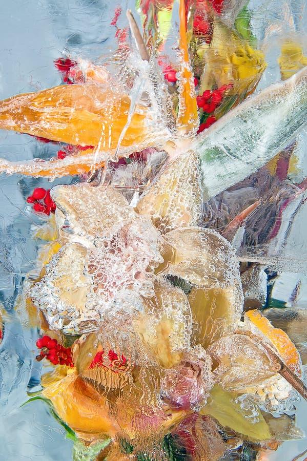Download Frozen Bouquet Of Orange Flowers Stock Photo - Image: 28493884
