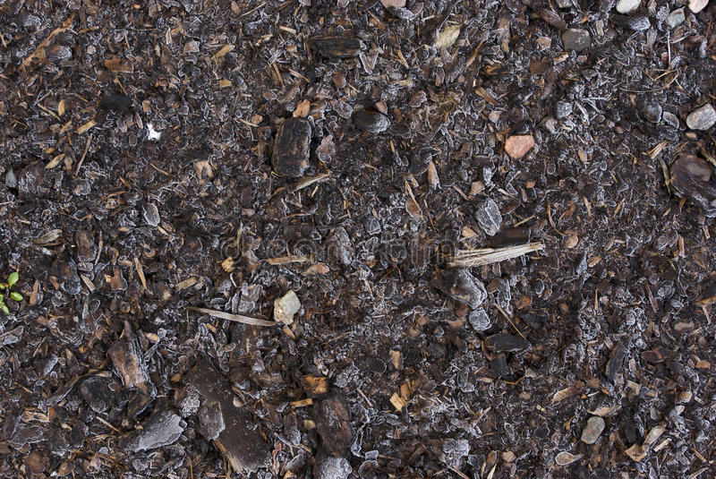 Frozen brown mulch and bark stock images