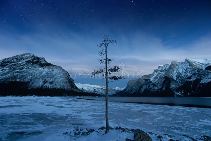 Winter Lake Minnewanka, Abraham, Methane bubbles,lifestyle, Travel Alberta, Canadian Rockies,Banff National Park,Icefiled Parkways. Frozen canadian lakes can stock photos