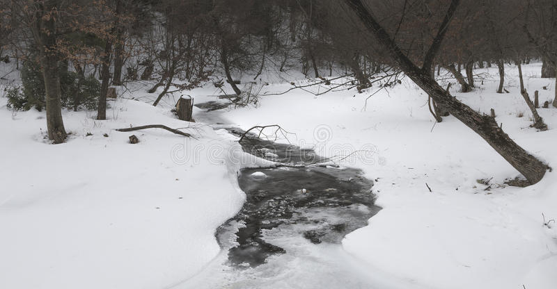 Frozen creek in the forest during winter stock photo