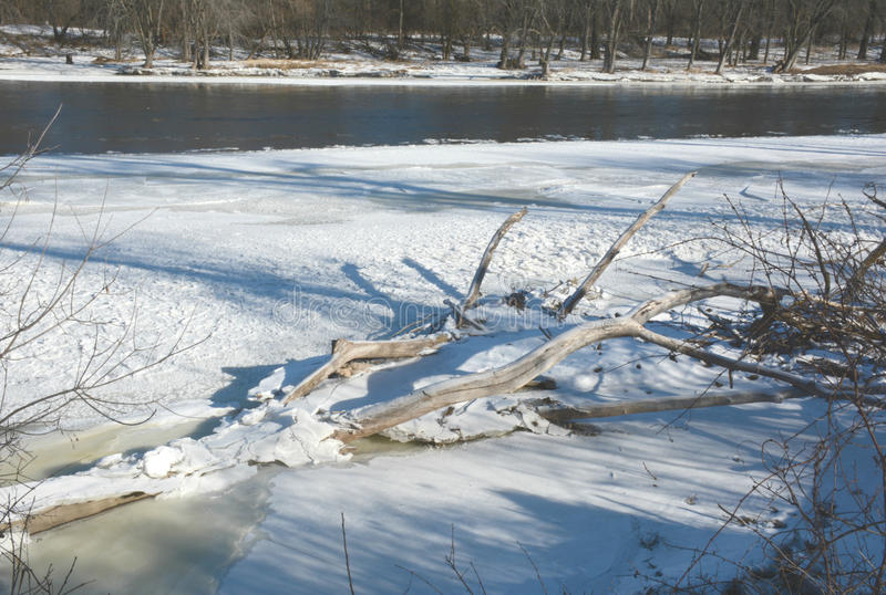 Download Frozen Driftwood Along The Upper Mississippi River Stock Image