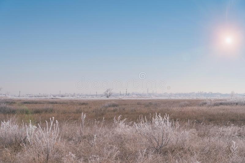 Frozen dry grass in hoarfrost in a large meadow field. Beginning of winter, frost stock photography