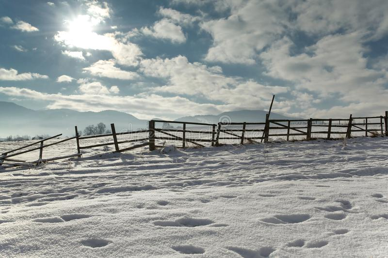 Frozen fence royalty free stock photography