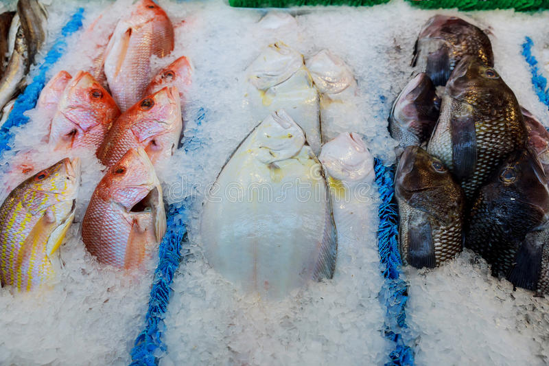 frozen fish on the counter at the supermarket royalty free stock photos