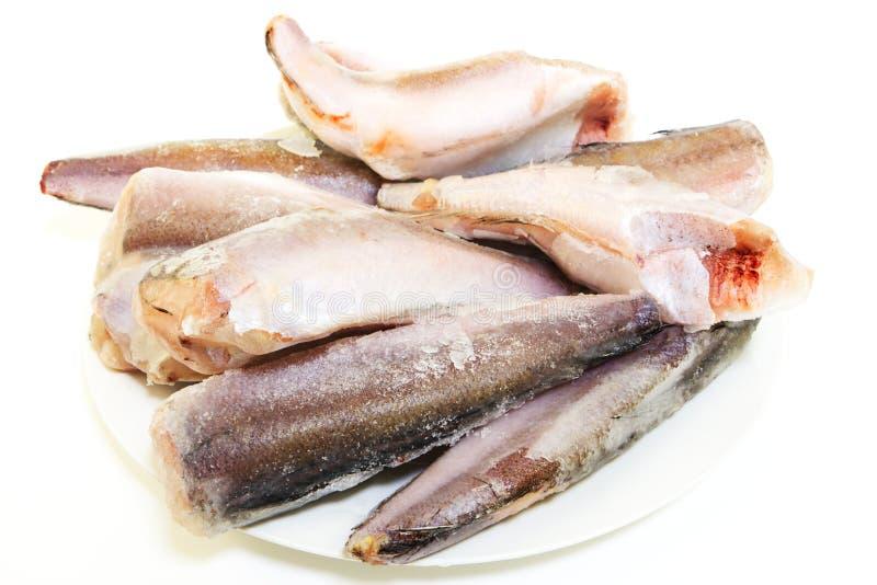 Frozen fish hake royalty free stock image